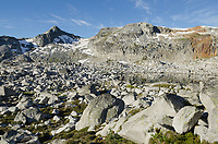 Boulder field in Marriott Basin Coast Mountains British Columbia
