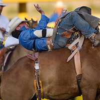 Bareback rider Evan Jayne holds on for a winning ride during the first round of the Fourth of July PRCA rodeo Saturday in Window Rock.