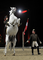 """© Licensed to London News Pictures. 23/11/2011, London, UK. The spanish The Spanish Riding School of Vienna and their white Lipizzaner stallions rehearse their show. It is five years since the highly trained horses and riders of the 430 year old """"High School for Classical Horsemanship"""" have graced the halls of the UK. They're back with the show entitled """"Imperial Dream"""" at Wembley Arena from 24th November 2011. Photo credit : Stephen Simpson/LNP"""