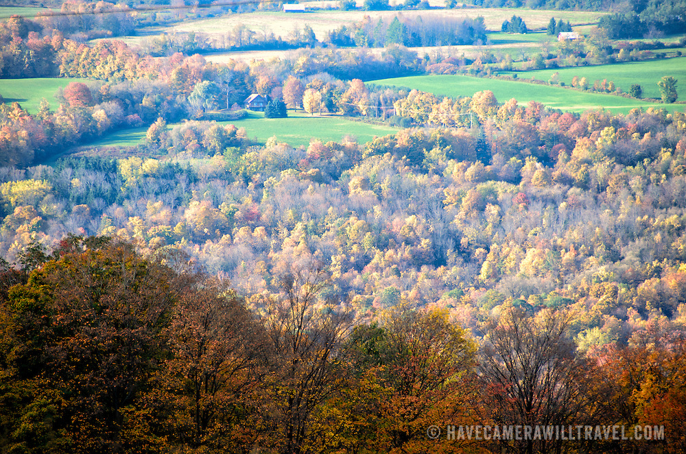 A hillside of fall leaves in upstate New York.
