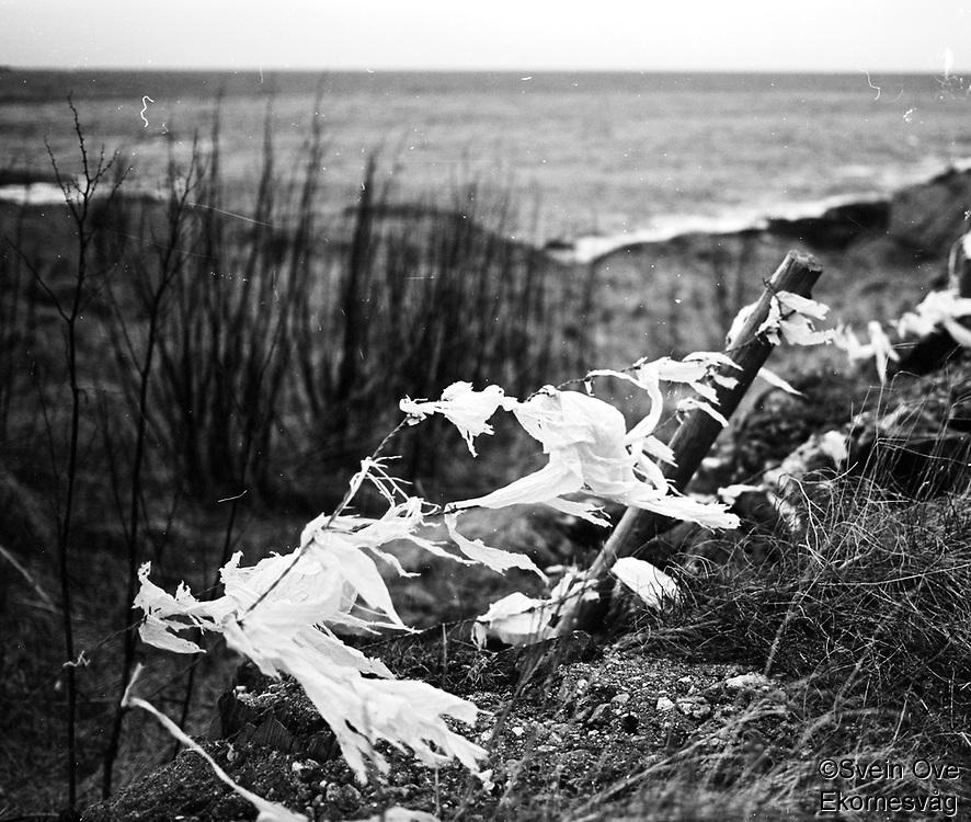 """Torn apart, slowly""<br /> Foto: Svein Ove Ekornesvåg"