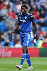 Sammy Ameobi of Cardiff City  - Mandatory by-line: Joe Meredith/JMP - 07966386802 - 28/07/2015 - SPORT - FOOTBALL - Cardiff,Wales - Cardiff City Stadium - Cardiff City v Watford - Pre-Season Friendly