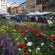 Union Square Farmer's Market in Manhattan