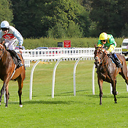 Lingfield 2nd August