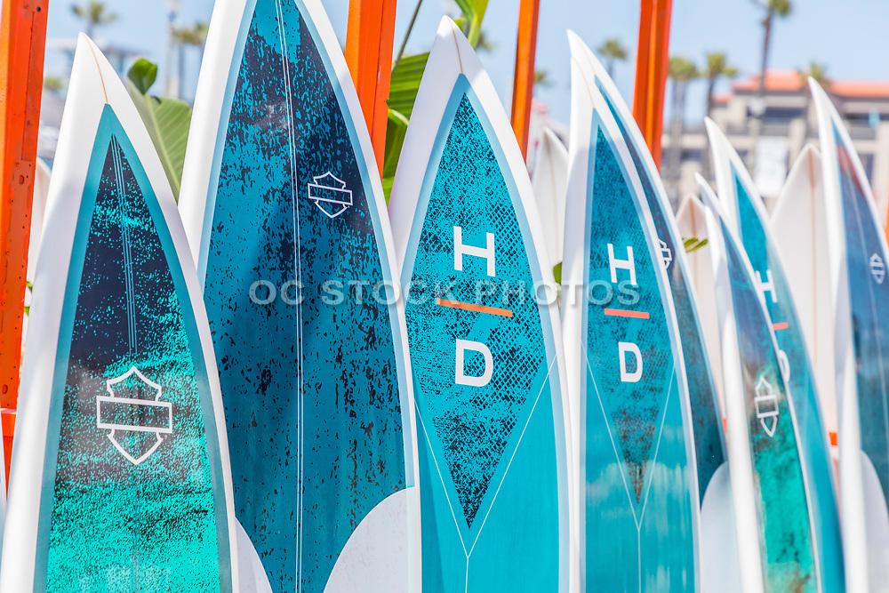 Ocean Blue Surf Board Rentals