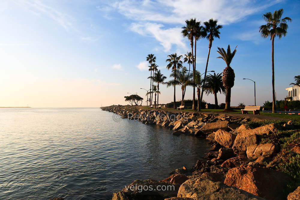 Jetty View Park in Newport Beach  California on Balboa Peninsula where Newport Bay meets the Pacific Ocean. On the other side of palm trees is the notorious Wedge. The opening scene of Gilligan's Island was filmed here where the Minnow heads out to sea.