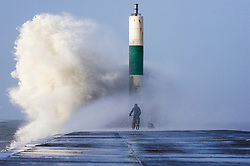 © London News Pictures. 01/02/2016. Aberystwyth, UK. <br /> A man rides a bike underneath a huge wave as storm Henry, the eighth named storm of the 2015/16 winter, batters the coast and sea defences at Aberystwyth in Wales.  Yellow and Amber severe weather warnings are in place for much of northern England and Scotland. Photo credit: Keith Morris/LNP