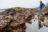 A man stands over a tidepool with the strange formations of past debris of a long-ago garbage dump co-mingling with nature at Glass Beach, Fort Bragg, Mendocino County of California. Model released.