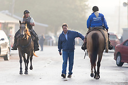 Trainer Greg Foley, center walks down the main drag of the backside of Churchill Downs before Derby 142 hopefuls were on the track for training, Sunday, May 01, 2016 at Churchill Downs in Louisville.
