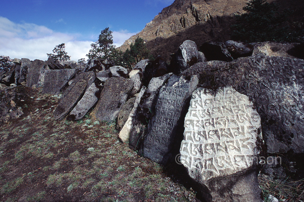 Mani stones on the trail to Samagoan village in Nepal.