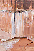 Detail of a weathered cliff face in Zion National Park, Utah.