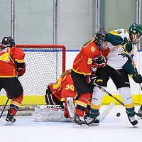 3rd year forward Emma Waldenberger (9) of the Regina Cougars in action during the Women's Hockey Game on November 25 at Co-operators arena. Credit: Arthur Ward/Arthur Images