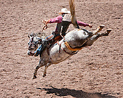 Trell Etbauer shows off his skills in the Saddlebronc event. Saddlebronc riding is known as the classic rodeo event.