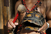 Tortoise carapace used by Shuar Indian as percussion instrument<br /> Puerto Francisco de Orellana or Coca, Amazon Rainforest<br /> ECUADOR. South America