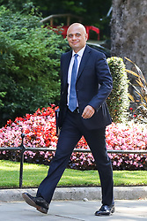 © Licensed to London News Pictures. 23/07/2019. London, UK. Home Secretary Sajid Javid  arrives in Downing Street to attend Theresa May's final Cabinet meeting. Photo credit: Dinendra Haria/LNP