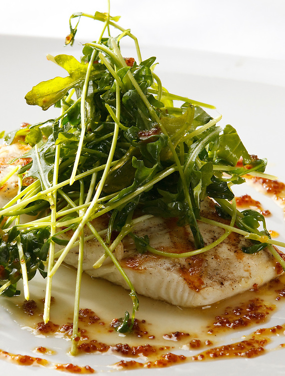 Halibut with pea shoots and honey mustard sauce.