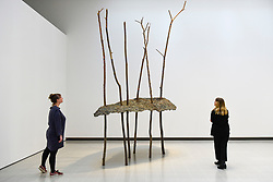 "© Licensed to London News Pictures. 02/03/2020. LONDON, UK. Staff members view ""Soffio di foglie"", 1982, by Giuseppe Penone. Preview of ""Among The Trees"" exhibition at the Hayward Gallery on the Southbank.  Artworks by 38 international artists explore man's relationship with trees and forests at a time when the destruction of forests is accelerating in show which runs 4 March to 17 May 2020.  Photo credit: Stephen Chung/LNP"