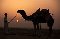 man looking at his camel during sunset khuri dunes in thar desert near jaisalmer in rajasthan state in india