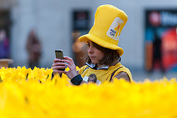 © Licensed to London News Pictures. 02/03/2017. London, UK. A Marie Curie volunteer photographs The Garden of Light, comprising 2,100 daffodils, which is currently on display in Paternoster Square next to St. Paul's Cathedral.  Each daffodil represents a Marie Curie Nurse, symbolising the care and support they give to families affected by terminal illness.  As part of the Great Daffodil charity, the display will be moved to other locations in the UK during March. Photo credit : Stephen Chung/LNP