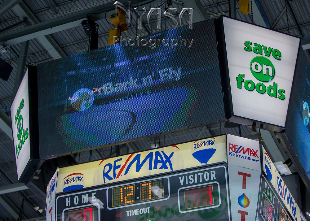 KELOWNA, CANADA - OCTOBER 22:  Bark N' Fly Promotion at the Kelowna Rockets game on October 22, 2017 at Prospera Place in Kelowna, British Columbia, Canada.  (Photo By Cindy Rogers/Nyasa Photography,  *** Local Caption ***