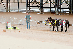 What do Cleethorpes Donkeys get for dinner? Half hour just like Skegness Donkeys Oh the old jokes are the best. Looks like the end of the season from the amount of people on the beach..14th September2011 Image © Paul David Drabble