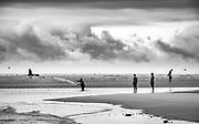 Fishing for bait fish in a tidal pool at Ocean Isle Beach.