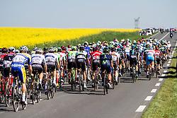 The peloton cycling throug fields of mustard flowers, 2017 Paris-Roubaix, France, 9 April 2017, Photo by Thomas van Bracht / Peloton Photos