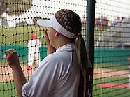 Softball Portfolio