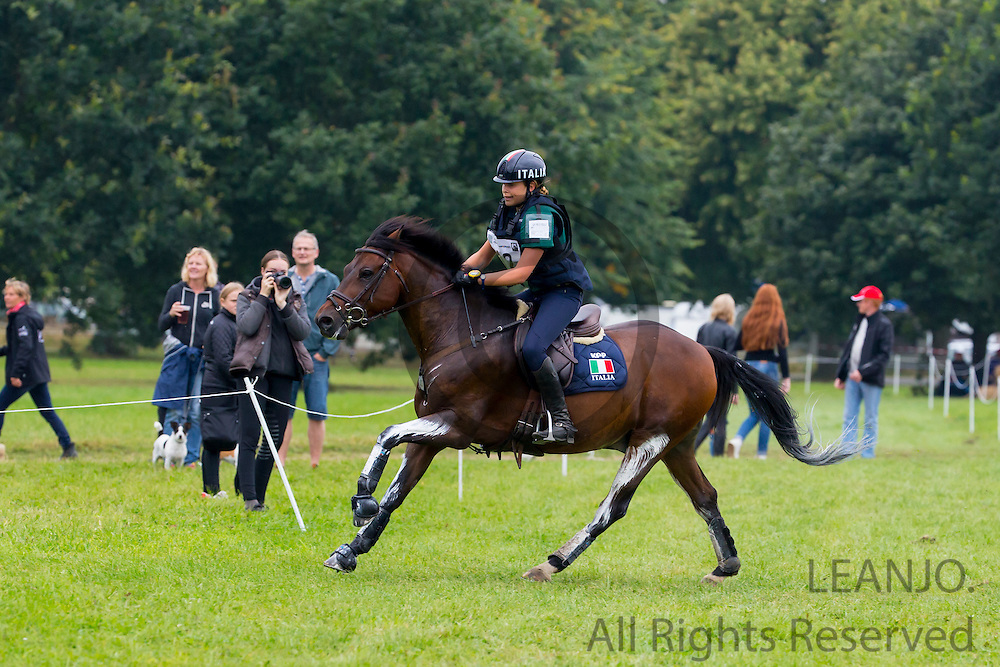 Maria Francesca Niada - Holsteins Nimbley<br /> FEI European Championships Ponies 2016<br /> © DigiShots