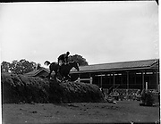 "04/08/1960<br /> 08/04/1960<br /> 04 August 1960<br /> R.D.S Horse Show Dublin (Thursday). William McCully's horse ""On Speck"" taking part in the final jump-off in Competition ""F"" over the permanent course at Ballsbridge, Dublin."