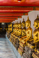 aligned golden buddha statues at Wat Pho temple Bangkok Thailand