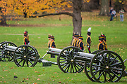 The gun carriage horses are led away and the guns wait for noon - The King's Troop Royal Horse Artillery (KTRHA), the ceremonial saluting battery of Her Majesty's Household Division, fire a 41-gun Royal Salute in honour of His Royal Highness The Prince of Wales's 69th birthday. 71 horses pulling six First World War-era 13-pounder Field Guns came into action from in the park halfway down Constitution Hill.  Each of the guns fired blank artillery rounds at ten-second intervals. London 14 Nov 2017