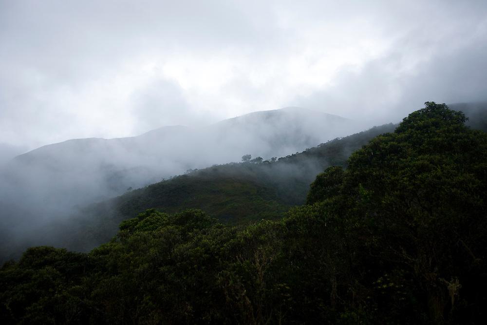 Alto Caparao_MG, Brasil...Nebulosidade nas montanhas do Parque Nacional do Caparao...Cloudiness in the mountains in Caporao National Park...Foto: BRUNO MAGALHAES / NITRO