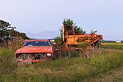 Abandoned Ford car and farm Machinery, Morpeth, NSW, Australia