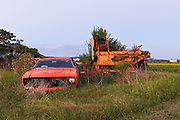 Abandoned Ford car and farm Machinery, Morpeth, NSW, Australia