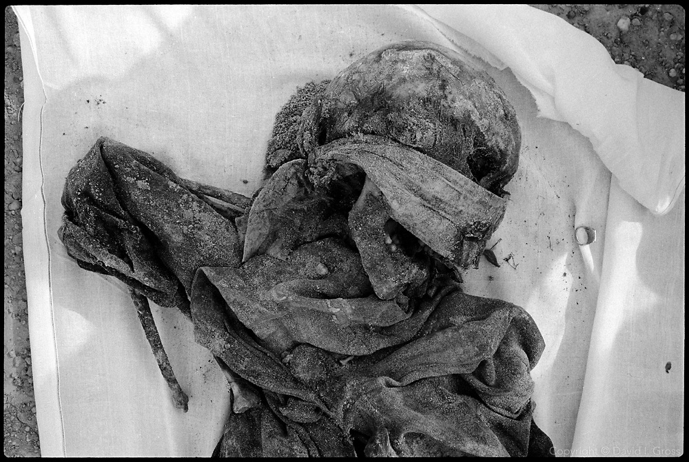 A body layed out in a shroud, awaiting investigation by the Iraqi exhumation team, from the mass grave near Al-Musayab, Iraq. Many of the bodies wore decaying blindfolds.