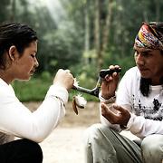 Cérémonie de rappé ce  mélange cendre de tabac et de tsunu écorce d'un arbre est inhalé par deux jeunes apprentis chamans. Nawa Share e Pû.