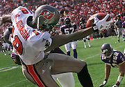 Tampa Bay wide receiver Keshawn Johnson makes a reception  close to the the  endzone , scoring Tampa's first touchdown during a victory over the Minnesota Vikings. ..