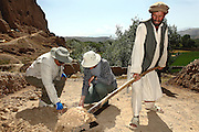 Professor Zemaryali Tarzi, (left) a notable An Afghan-born archaeologist from France and teacher in Strasbourg University, is portrayed discussing with one of his assistants on the excavation field where he is searching for a legendary 300m Sleeping Buddha. The statue should be located between the original two standing Buddhas, Afghanistan, as documented in the old account of a renowned Chinese scholar, Xuanzang, visiting the area in the 7th century. The Buddhas of Bamiyan were two 6th century monumental statues of standing Buddhas carved into the side of a cliff in the Bamiyan valley in the Hazarajat region of central Afghanistan, situated 230 km northwest of Kabul at an altitude of 2500 meters. The statues represented the classic blended style of Gandhara art. The main bodies were hewn directly from the sandstone cliffs, but details were modelled in mud mixed with straw, coated with stucco. Amid widespread international condemnation, the smaller statues (55 and 39 meters respectively) were intentionally dynamited and destroyed in 2001 by the Taliban because they believed them to be un-Islamic idols. Once a stopping point along the Silk Road between China and the Middle East, researchers think Bamiyan was the site of monasteries housing as many as 5,000 monks during its peak as a Buddhist centre in the 6th and 7th centuries. It is now a UNESCO Heritage Site since 2003. Archaeologists from various countries across the world have been engaged in preservation, general maintenance around the site and renovation. Professor Tarzi worked on projects to restore the other Bamiyan Buddhas in the late 1970s and has spent most of his career researching the existence of the missing giant Buddha in the valley.
