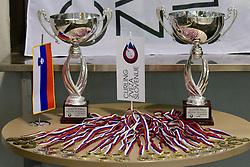 at 1st Curling National Championship, on December 19, 2010 in Dvorana Zalog, Ljubljana, Slovenia. (Photo By Matic Klansek Velej / Sportida.com)