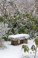 A snow-covered bench at the Asticou Azalea Garden, Northeast Harbor, Maine.
