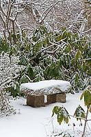 A snow-covered bench at the Asticou Azalea Garden, Northeast Harbor, Maine.