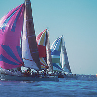 Sailboats with Colorful Spinniker Sails