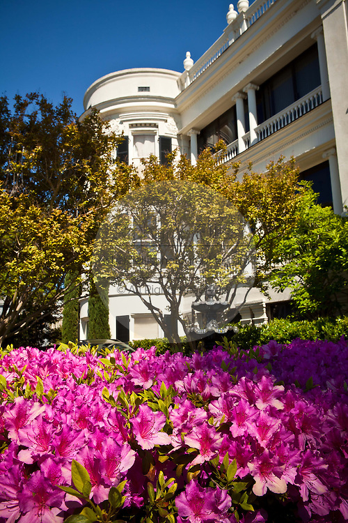 Historic homes along the Battery in Charleston, SC with azaleas in bloom.