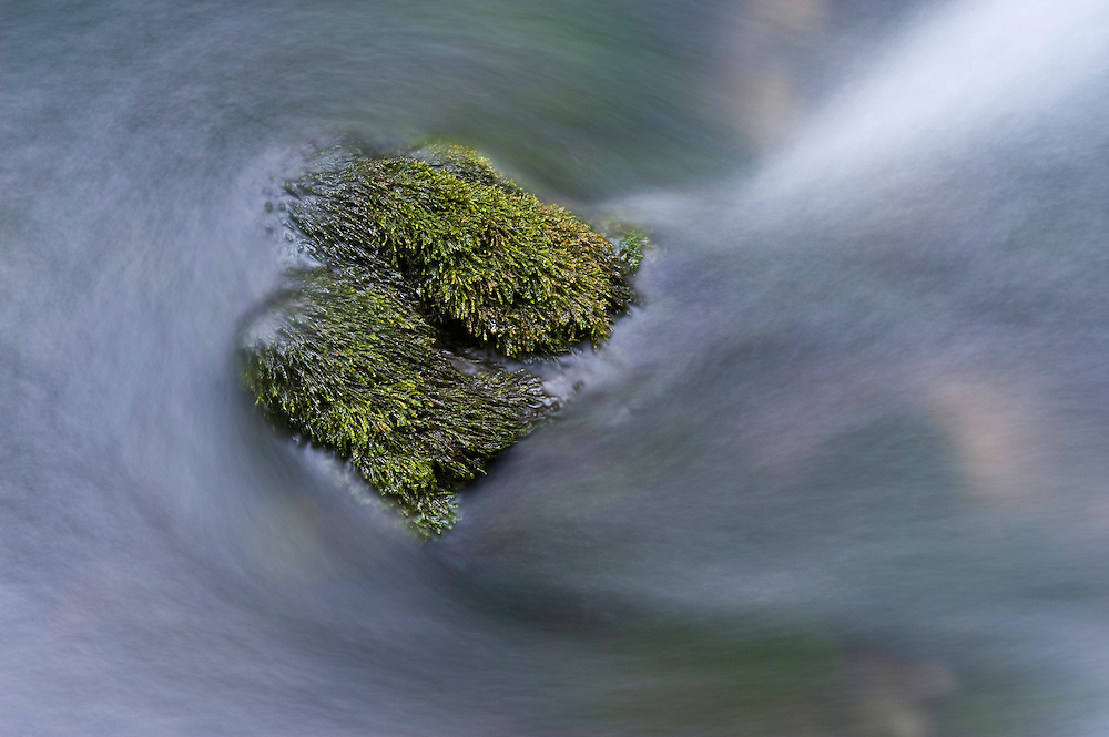 Moss-covered stones in the Crna Rjieka, Black river springs, Plitvice National Park, Croatia