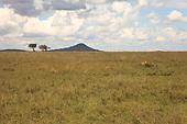 Tanzania Landscapes