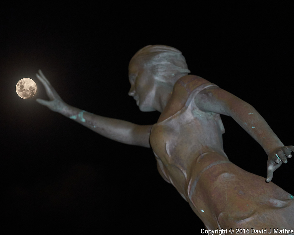 Reaching for the Moon. Image taken with a Leica T camera and 55-135 mm lens.