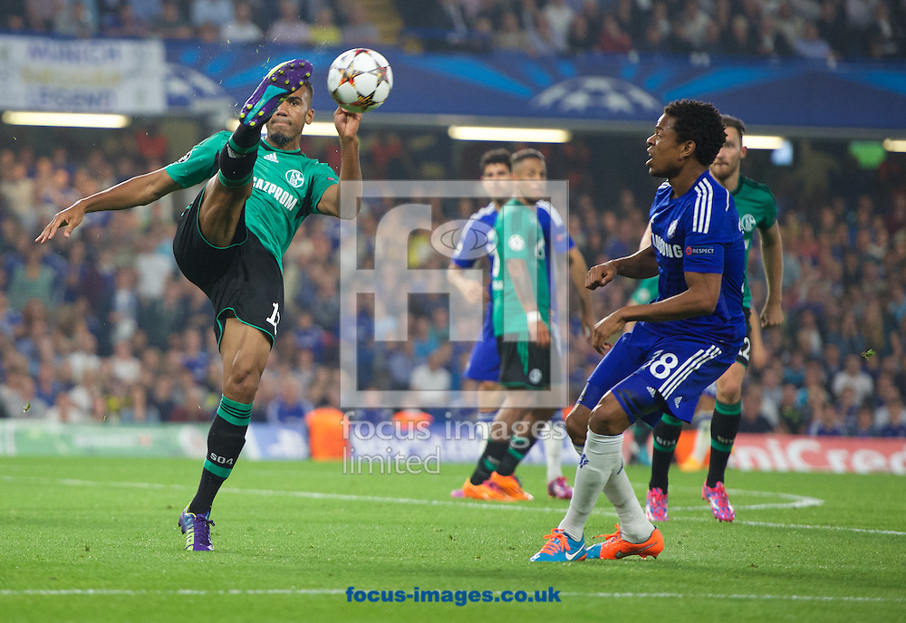 Sidney Sam of FC Schalke 04 clears the ball from Loic Remy of Chelsea during the UEFA Champions League match at Stamford Bridge, London<br /> Picture by Alan Stanford/Focus Images Ltd +44 7915 056117<br /> 17/09/2014
