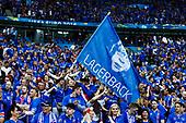 Quarter-final quarter-final France - Iceland