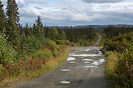 LIVING OFF THE GRID<br /> The road to the Castellani's house. It took Jennifer and Paul Castellani ten years to build the road by hand.<br /> Anchor Point, Alaska, USA